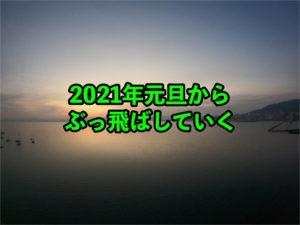 【ライフハッカー】2021年の目標【サラリーマン】