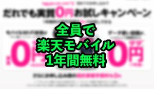 【締め切り間近!!】Rakuten hand or Rakuten Wifi Pocket?検討【1年間無料キャンペーン】